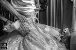 1 Pasquale Minniti Fearless Award Wedding Photographer