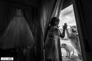 11 ISPWP Award Wedding Photographer