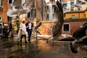 24 Pasquale Minniti Fearless Award Wedding Photographer